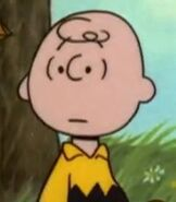 Charlie Brown in There's No Time for Love, Charlie Brown