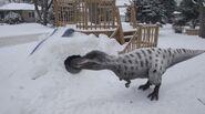 Dino Dana Nanuqsaurus
