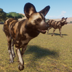 Dog, African Wild (Planet Zoo)