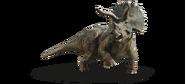 JP5 Triceratops