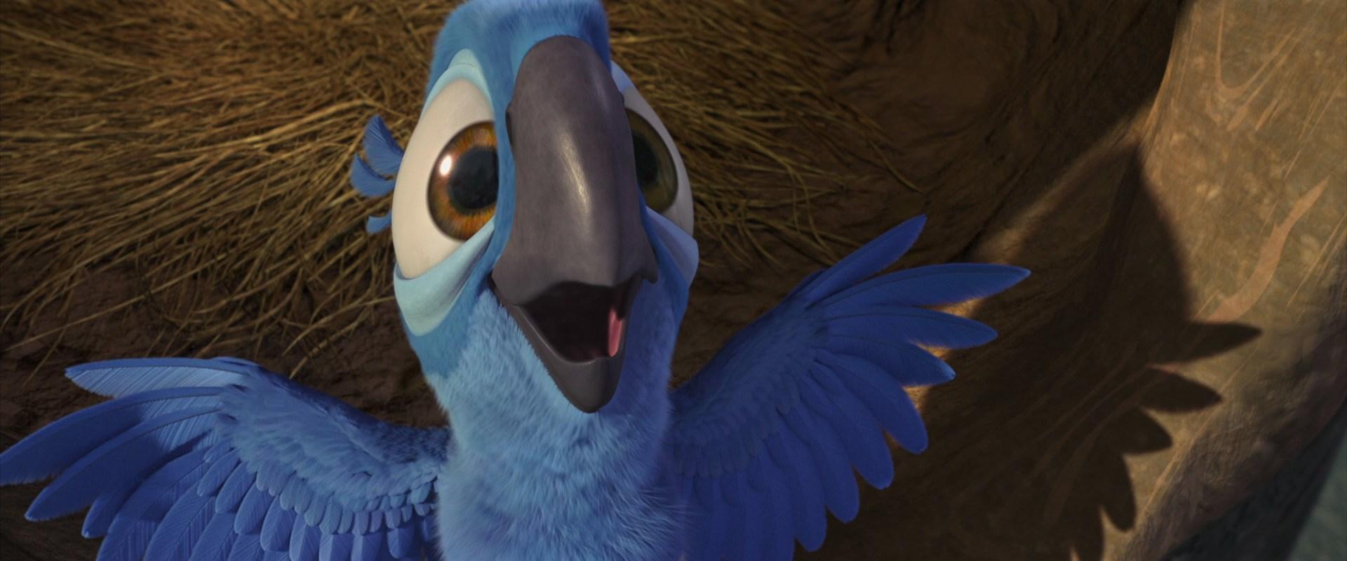 Chick Blu