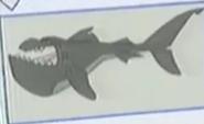 STNLY Bull Shark