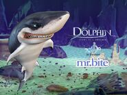 The Dolphin Story of a Dreamer Mr. Bite