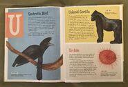 The Dictionary of Ordinary Extraordinary Animals (51)