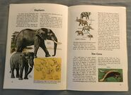 A Golden Exploring Earth Book of Animals (16)