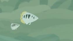 Archerfish (Wild Kratts).png