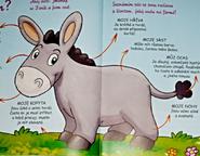 Daniel the Donkey Jack