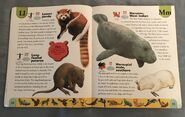 Endangered Animals Dictionary (14)