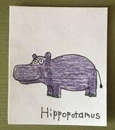 Hippopotamus Begins With H