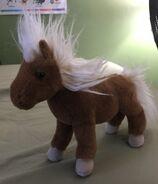 Tiny the Shetland Pony