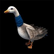 AoE2DE ingame goose icon