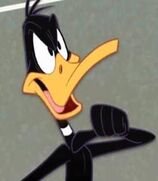Daffy Duck in The Looney Tunes Show
