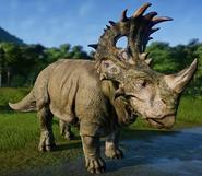 JWE Sinoceratops