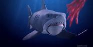 Robot Chicken Shark