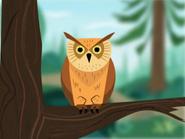 FHFIF Owl