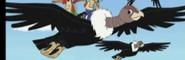 GDG Condors