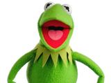 Kermit Home Video