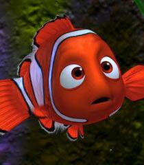 Nemo in Finding Nemo.jpg