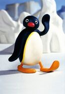 Pingu waves