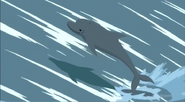 SJ Dolphin