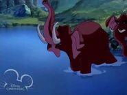 Tarzan elephants