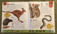 Weird Animals Dictionary (11)