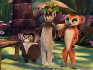 LemursThreeFFLN