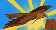 STNLY Hawk