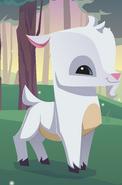 Animal Jam Goat
