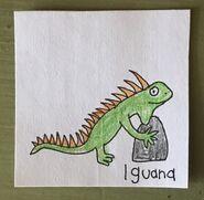 Iguana Begins With I