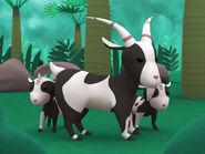 LTWR BW Goat