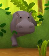 LTWR Hippo