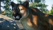 Planet Zoo Cougar