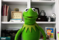 The-Muppets-Video-Call- -Muppets-Now- -Disney-1-47-screenshot