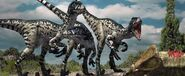 367 dromaeosaurus doruk