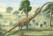 Mamenchisaurus constructus
