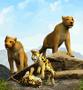 Mountain Lion-0 (Zoo Tycoon)
