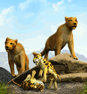 Mountain Lion-0 (Zoo Tycoon).png