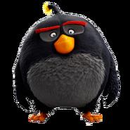 Bomb the Black Bird Transparent