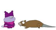Chowder meets Muskrat