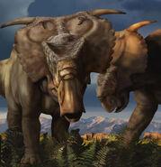 Pachyrhinosaurus perotorum dinosaur