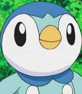 Piplup in Pokemon Dawn - Setting off on a New Journey!