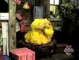 Big Bird sleeping in episode 198