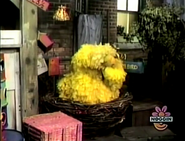 Big Bird sleeping in episode 198