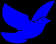 Blue-dove-hi-1-