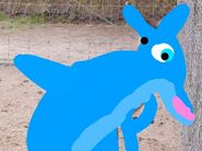 Daniel Alexander Dolphin as Eastern Grey Kangaroo