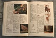The Kingfisher Illustrated Encyclopedia of Animals (102)