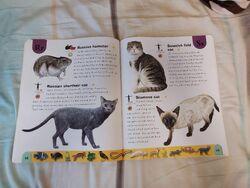 Pet Dictionary (21).jpeg