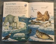 Animals of the Polar Regions (7)