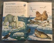 Animals of the Polar Regions (7)